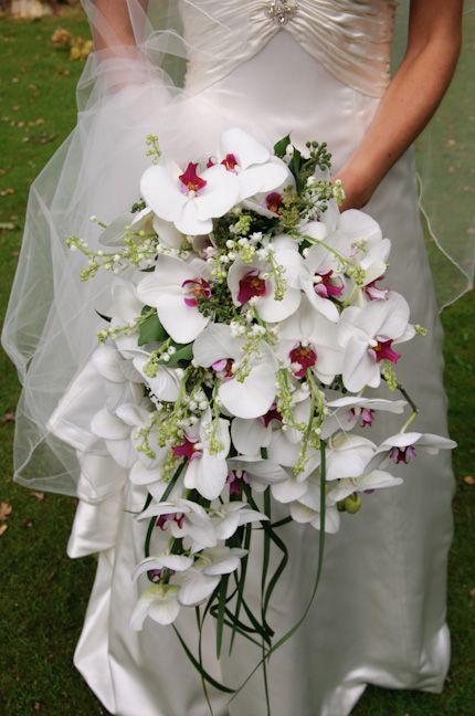 Wedding Bouquet Orchid Ideas : Orchid bouquet wedding