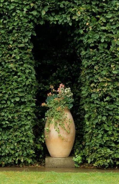 ideias originais jardim : ideias originais jardim:Cerca viva com nicho.