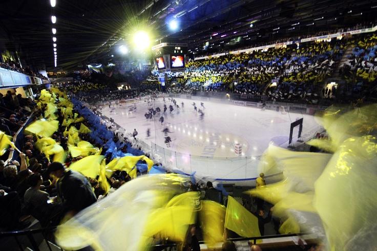 HV71, Kinnarps Arena   Swedish Sports & Culture   Pinterest