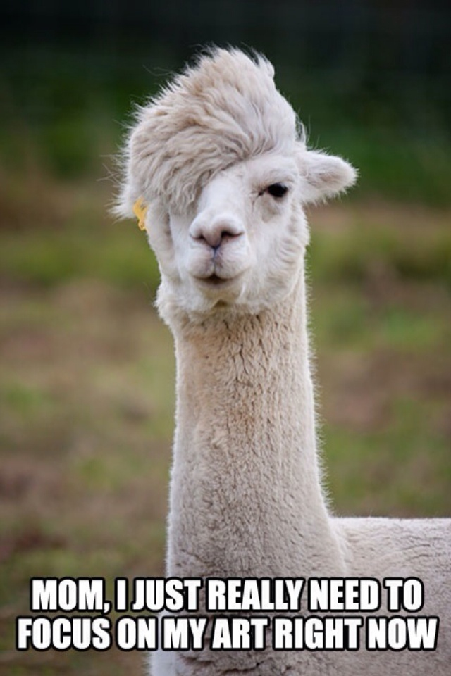 emo llama, llama funny, llama joke, alpaca joke, alpaca focus on art, llama focus on art