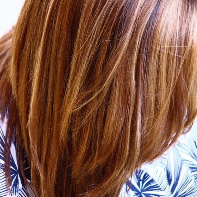Light Honey Brown Hair Color With Highlights ...