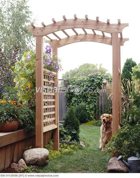 backyard trellis Outdoor spaces Pinterest