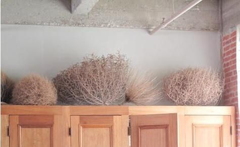 Accessories Tumbleweeds as Decor by