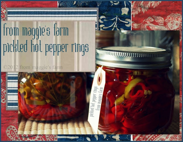 notes from maggie's farm: putting food by: pickled hot pepper rings