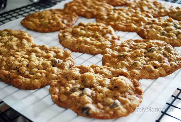 Double Chocolate Chip Walnut Oatmeal Cookies Recipe — Dishmaps