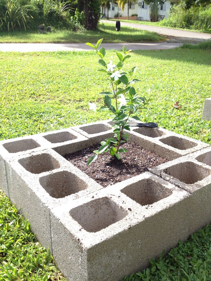 inexpensive raised flower bed plant flowers in the blocks for