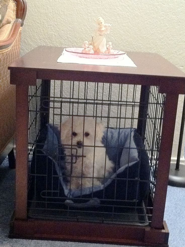 Dog Crate End Table For The Love Of Dogs Pinterest