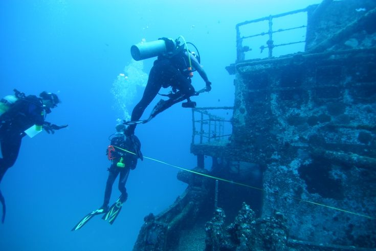 Getting dive certified this summer so that one day I will be able to do this