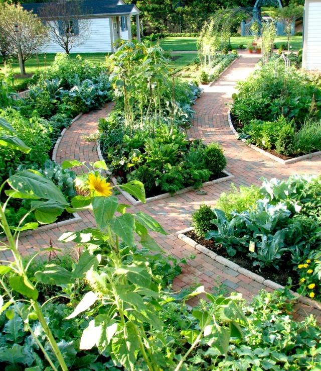 spiral herb garden garden pinterest