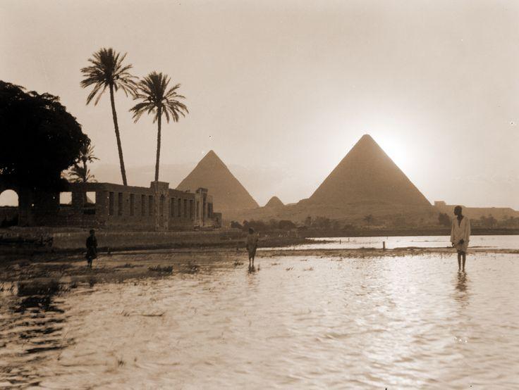 Egyptian Casino Leon Focus Gambling Strategy