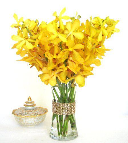 Fresh Flowers - Yellow Mokara Orchids with Vase - http   yourflowers    Yellow Orchids Flowers