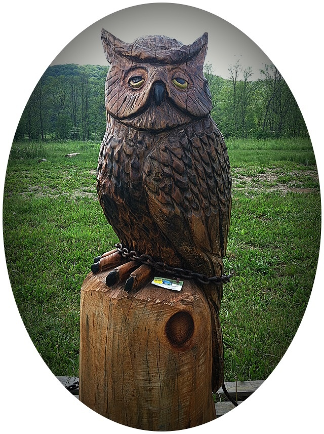 Chainsaw carved owl candor ny carvings