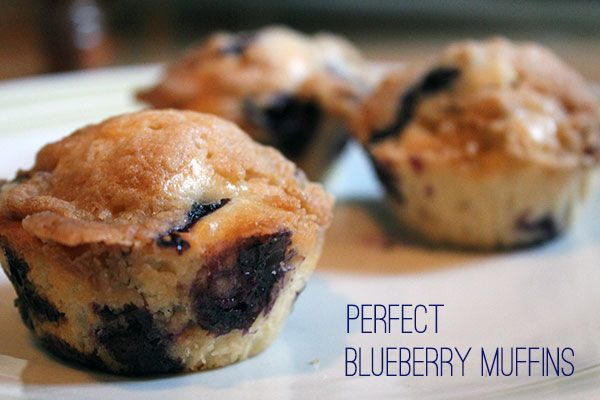 perfect blueberry muffins   tasty and delicious   Pinterest
