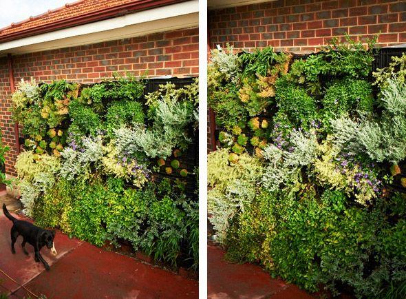 Diy Vertical Gardens Diy Garden Pinterest