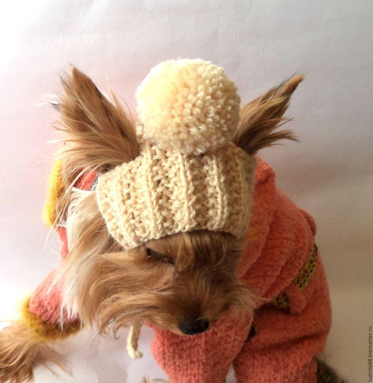 Вяжем для собак шапка