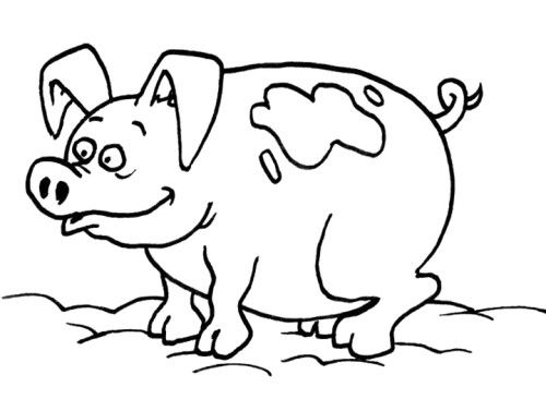 pig in mud coloring pages - photo#9