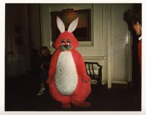 big pink rabbit big is bigger pinterest