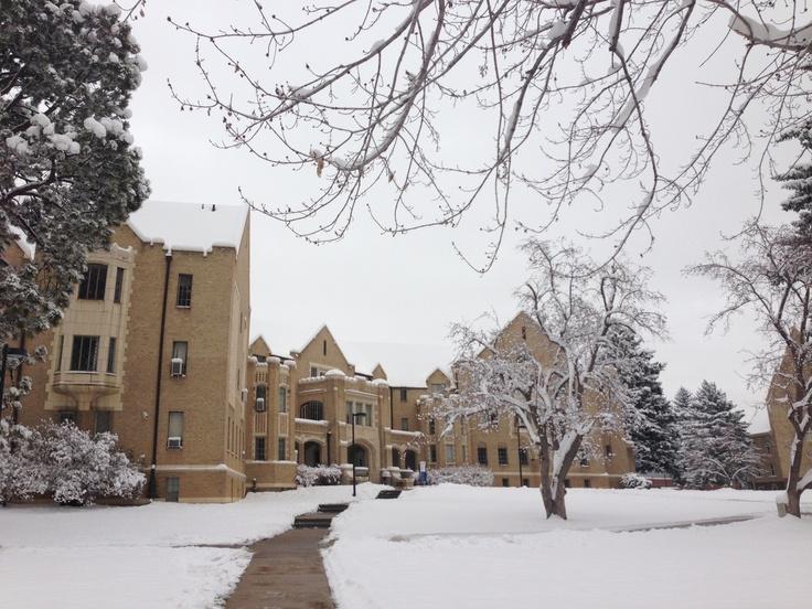 denver university entrance essay