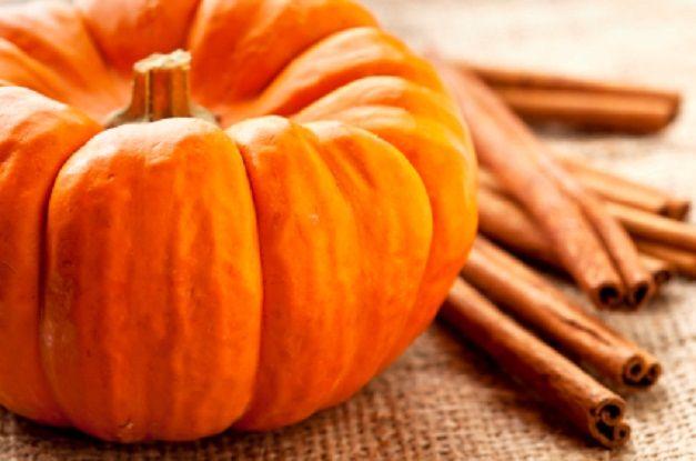 Pumpkin Spice Shake | Body by Vi Shake Recipes | Pinterest