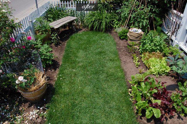 Front Yard Vegetable Gardens Home Design 2017
