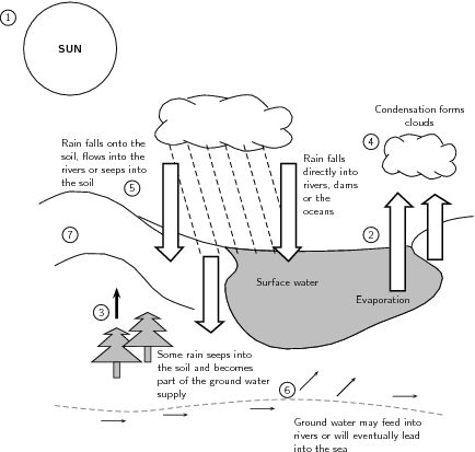Blank Slope Worksheets | Figure 1: The water cycle