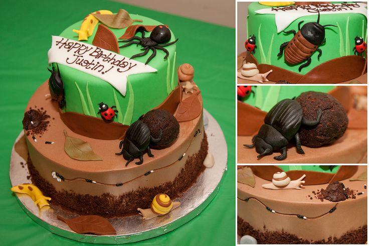 Creepy Crawly Bug cake with black widow, ladybugs, snails, slugs ...