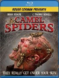 Camel Spiders Blu-ray Review