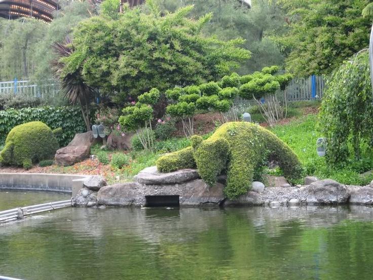 Bonfante Gilroy Gardens Ca Topairy Hedge Pinterest