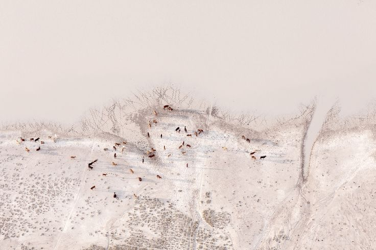Zack Seckler | Photographer - Aerial Abstracts