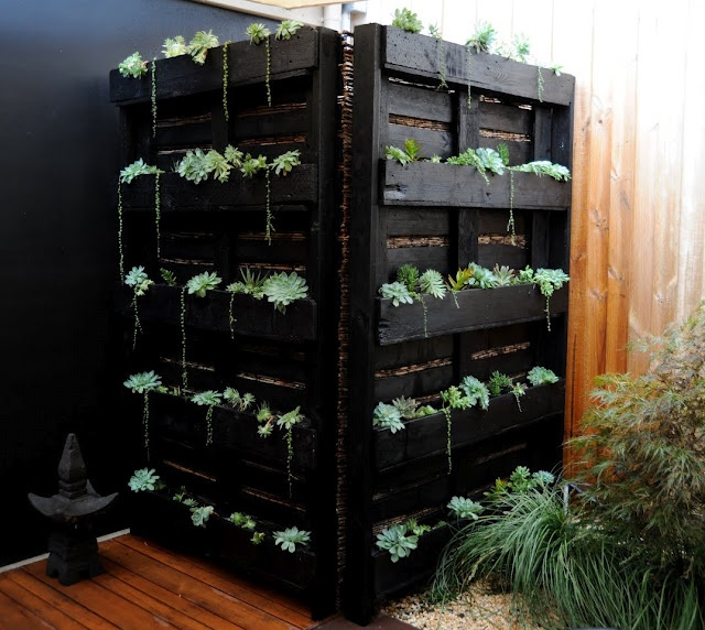 Wood pallet vertical garden Yard and garden Pinterest