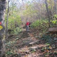 Hiking Activities:  Sometimes when we are out hiking with Scouts it seems like they are so focused on getting from here to there that they forget to look around and see the sights.  If you are out with a goal oriented group and you want them to take some time to explore, consider adding one or more additional hiking activities. You'll find some suggestions below