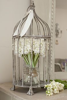 Decorative bird cage with flowers-better than my candle that is in there now.