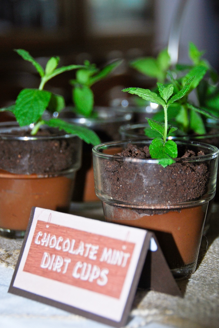 chocolate mint puddings recipes dishmaps potted chocolate mint ...