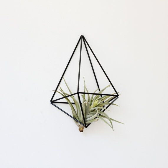 Himmeli Wall Prism no. 1 / Modern Geometric Ornament / Air Plant Hanger / Minimalist Home Decor