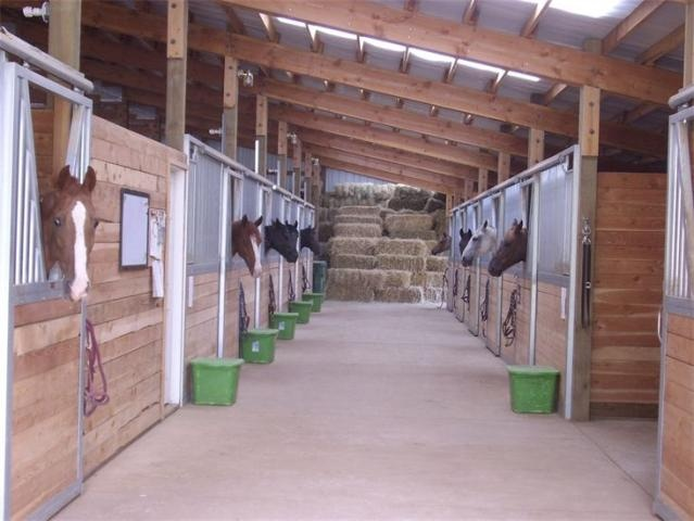 pics luxury horse barn interiors design plans joy studio