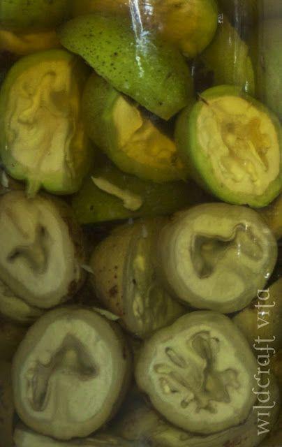 Nocino (Green Walnut Liqueur) is believed to have originally been ...