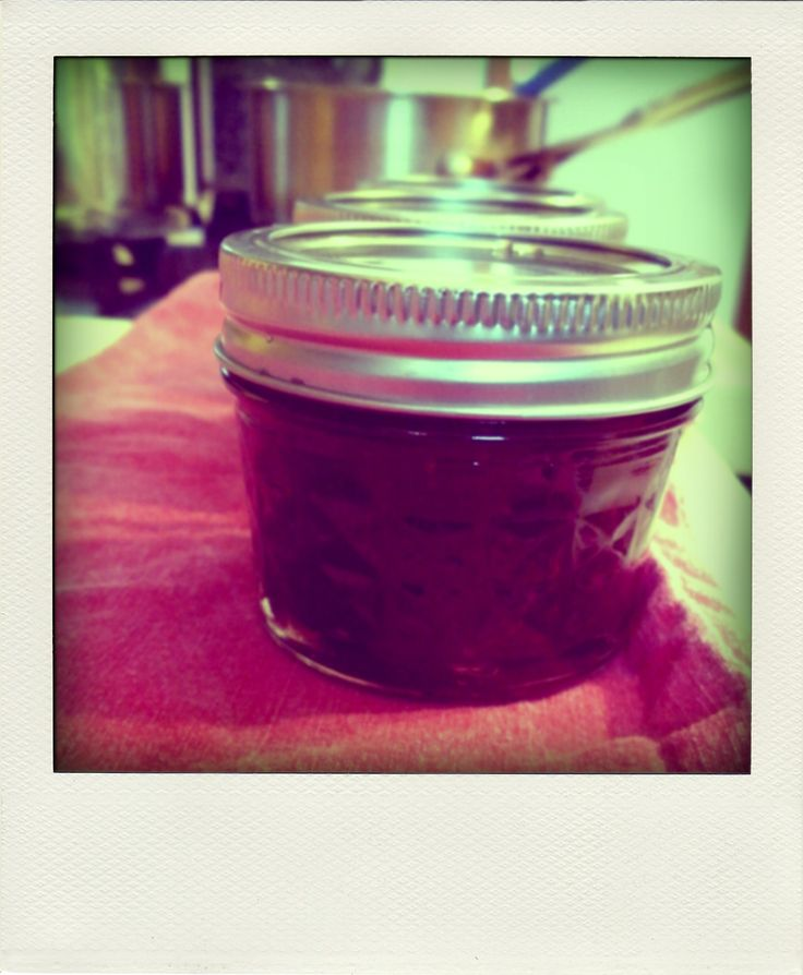 Canned cranberry ketchup | canning / preserving / dehydrating / freez ...
