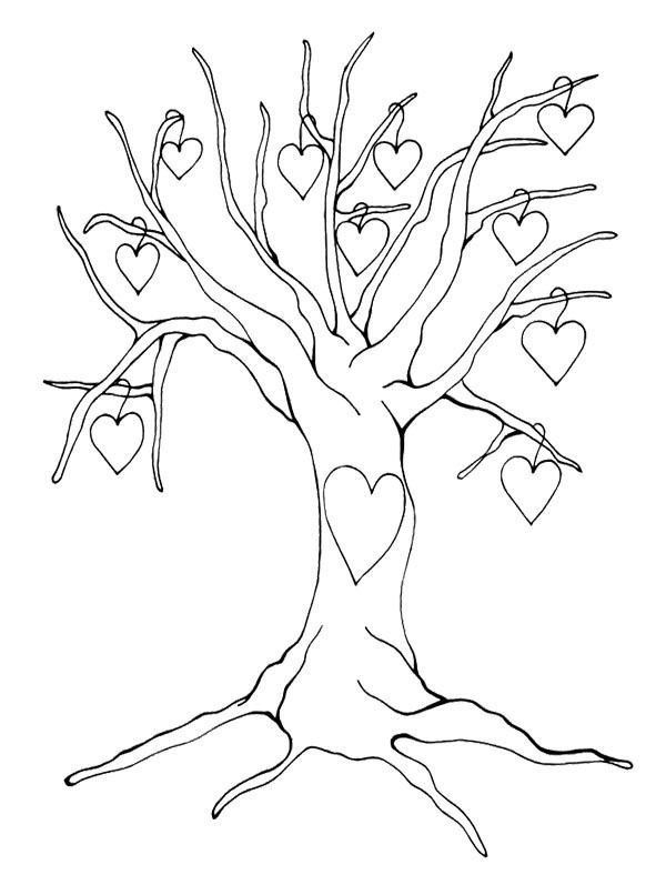 Trees without leaves coloring pages sketch coloring page for Coloring pages of trees without leaves