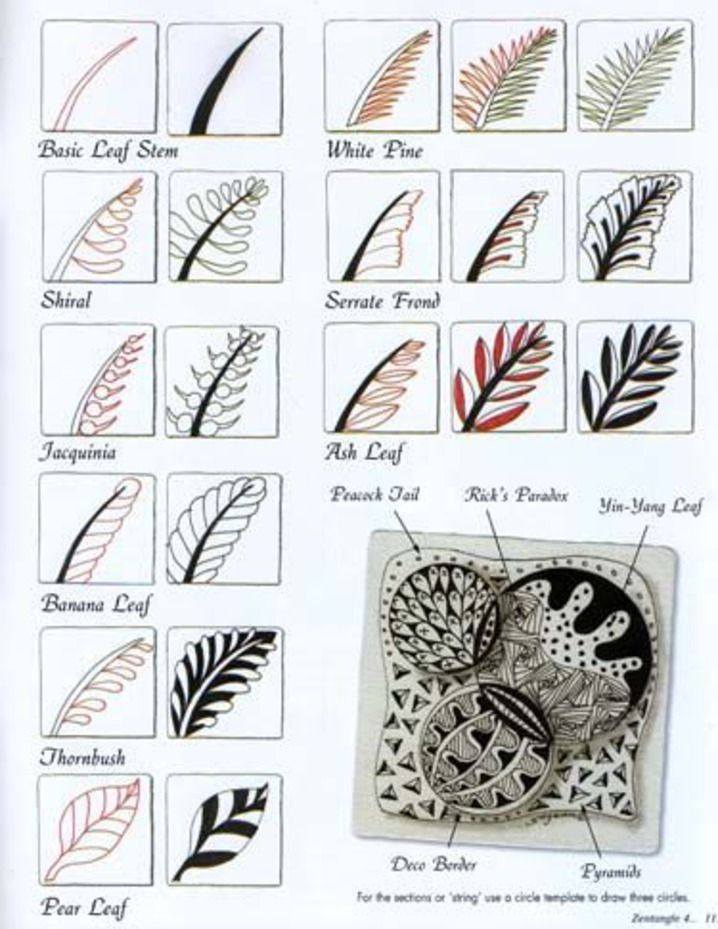 Zentangle Patterns  amp  IdeasZentangle Patterns Tutorial