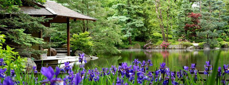 Anderson Japanese Gardens Rockford Il Gardening Ideas Pinterest