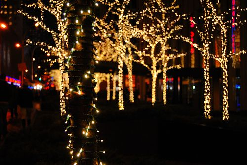 Christmas lights tumblr