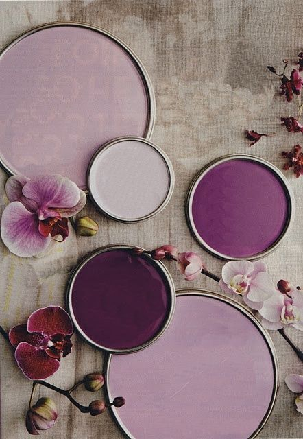 Shades of purple.... would Vince let me do our living room in this?