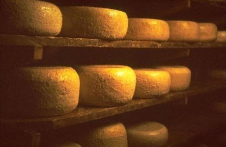 Ardi Gasna, Fromage Basque, Fromage de brebis