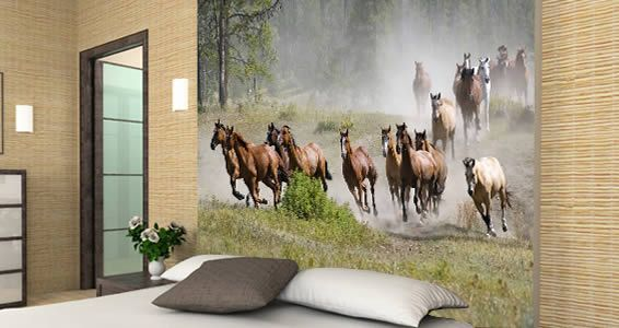 Horses racing wall mural my style pinterest for Equestrian wall mural