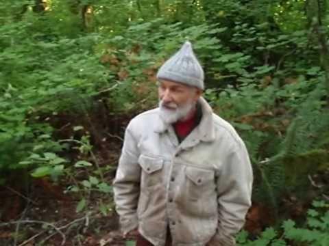 stinging nettles: harvesting, eating, cooking http://www.richsoil.com/nettles.jsp