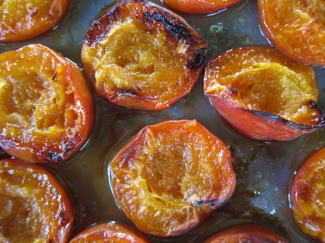 roasted apricots - Elizabeth Minchilli in Rome