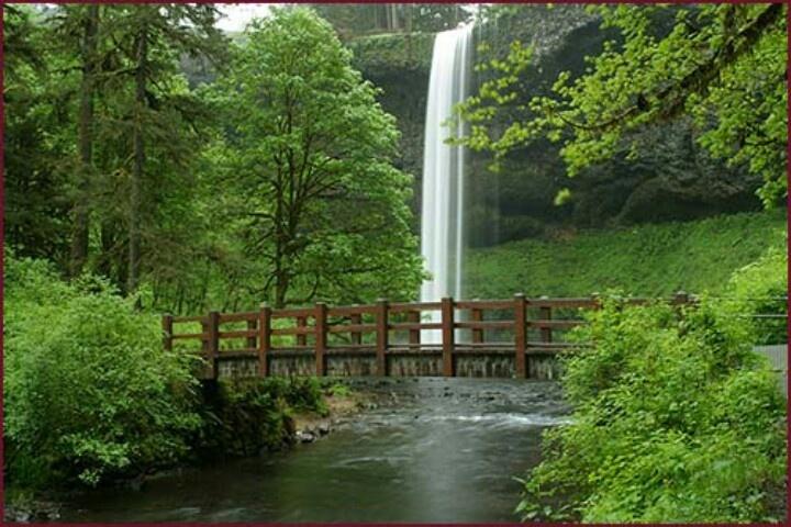 Silver Falls State Park Oregon Future Trips Pinterest