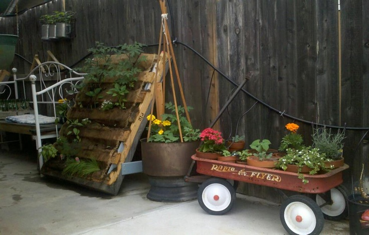 Vegetable garden is all above ground in containers and