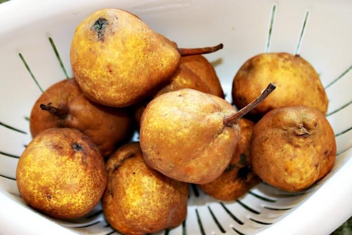 pear butter | Pear Recipes | Pinterest