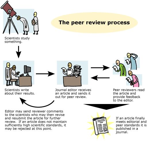 the peer review process things pinterest